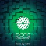 Exotic Vibrations 023 (October 2015)