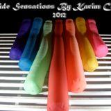 Pride Sensations 2012 By Karim Cato