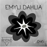 Emyli Dahlia - 0418