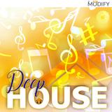 DeepHouse & NuDisco Exclusive Megamix