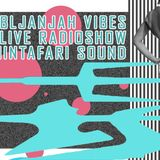 LjubljanJah Vibes ft. TminTafari Sound 9.6.2017