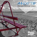 Analog Trip - Midnight Summer Dream (Original Mix)