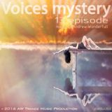 Andrew Wonderfull - Voices mystery 013 episode