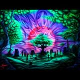 Rapante - dance to the Future (07.05.2014)
