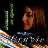 Eruvie - Sound Of Spirit Vol. 30