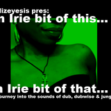 Mizeyesis pres: An irie bit of this.. An irie bit of that..: a dub, dubwise, & jungle mix (Feb 2012)