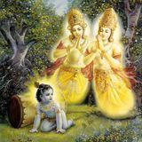 Radhakanta kirtan 5.11.12 Damodara program