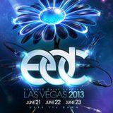 Cedric Gervais - Live @ Electric Daisy Carnival EDC Las Vegas (USA) 2013.06.21.