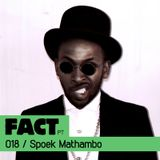 FACT PT Mix 018: Spoek Mathambo