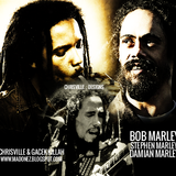 Marley Session Vol.2 - Bob Marley | Damian Marley Mix | Stephen Marley| Mix