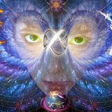 Harmonious Earth VII