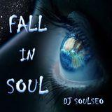 Fall In Soul