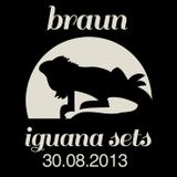 Braun Iguana Sets: 30.08.2013