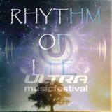 Rhythm Of Life Special UMF 2013