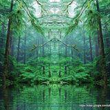 Forest of Ekto