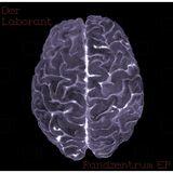 Der Laborant - Neuronen