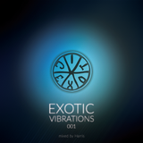 Exotic Vibrations 001 (December 2014)