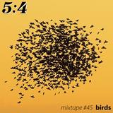 Mixtape #45 : Birds
