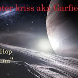 hunter kriss aka garfield - trip hop tentation