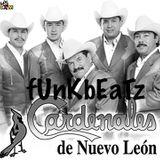 Los Cardenales De Nuevo Leon Mix