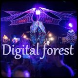 Deep prog zenon set @ Digital forest 2017