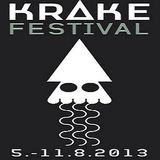 Bill Youngman (Live PA) @ Krake Festival 2013 - Suicide Circus Berlin - 09.08.2013