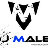 Armin Van Buuren Vs. Martin Garrix - Ping Pong Animals (DJ MALEK Mashup)
