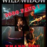 Interview Wild Widow (FR)