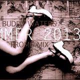 Summer '13 Promo Mix (Raw)