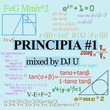 PRINCIPIA#1