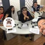 Tras las Huellas del Sabueso -  La Ruta Cafetalera en México