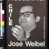 Prima che sia notte, puntata 11: La libertá di espressione in Cile