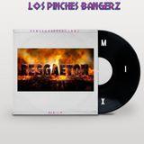 Reggaeton Mix (Los Pinches Bangerz)