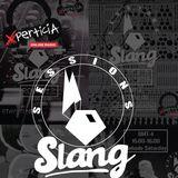 SlangCast7@Xperticia (SKiPi)