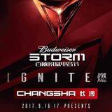 San_Holo_-_Live_at_Budweiser_Storm_Festival_Changsha_16-09-2017-Razorator
