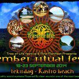 Tree Of Life - September Ritual ( Promo Set )