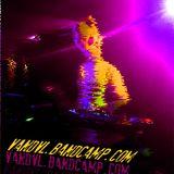 VANDVL - RAVE IS RAVE! PARTY @MANHATTEN241114