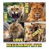 Reggaemylitis Radio Show, Vibes FM, 8 March 2017