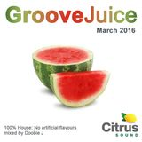 Groove Juice Melon - March 2016