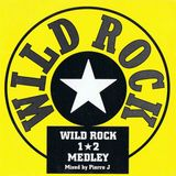 Archive 1995 - Wild Rock Medley