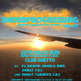 UnderProgressing Vol.152, HipHop and Techno