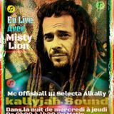 # 83# DHM DHCity RS ft Misty Lion En Mode RUN Hit Top LaVie sur RADIO FPP106.3FM Paris le 22 10 15