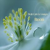 Drab Cafe & Lounge - Bloom