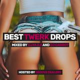 ILLYA 2.0 & DJ CARROT — BEST TWERK DROPS (2016) [hosted by GROOVE DEALERS]