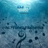 DJ Scuba Steve Presents.... Neptunes Treasure Vol. 2