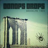 Oonops Drops - Brooklyn Tree
