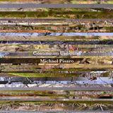 Michael Pisaro - Congaree Nomads
