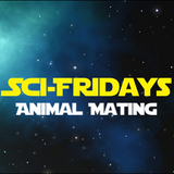 Sci-Friday - Mating