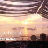 My Deep House (Garage mix) By Fede Cattoni.