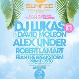Lukas + David Moleon - B2Bset at Sunfec Festival - 15/09/2012 SPN